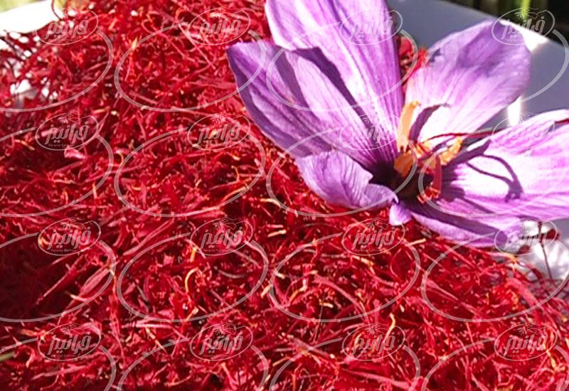 قیمت 5 مثقال زعفران بسته بندی در بازار گناباد