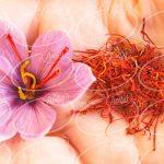 منفعت حاصل از فروش زعفران در ترکیه