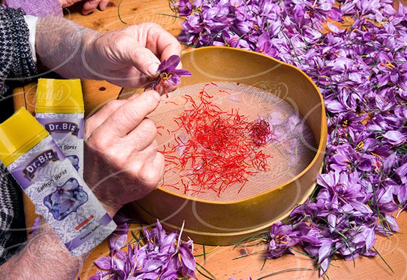 فروش اسپری زعفران بیز خالص برای آَشپزان